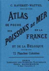 Casimir Raveret-Wattel - Atlas de poche des poissons de mer de la France et de la Belgique avec leur description, moeurs et organisation - Suivi d'un Appendice sur les Cétacés.