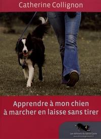 Deedr.fr Apprendre à mon chien à marcher en laisse sans tirer Image