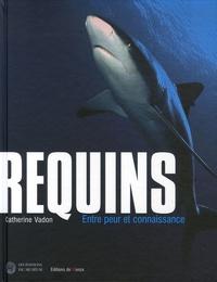 Ucareoutplacement.be Requins - Entre peur et connaissance Image