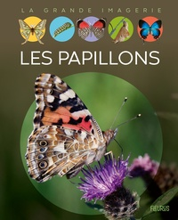 Cathy Franco - Les papillons.