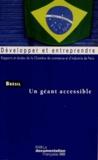 CCIP - Brésil - Un géant accessible.