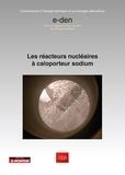 CEA - Les réacteurs nucléaires à caloporteur sodium.