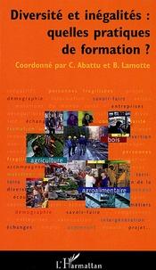 Cécile Abattu et Bruno Lamotte - Diversités et inégalités : quelles pratiques de formation?.