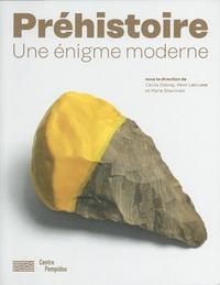 Cécile Debray et Rémi Labrusse - La préhistoire - Une invention moderne.