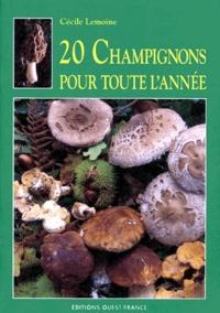 Lemememonde.fr 20 champignons pour toute l'année Image
