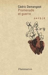 Cédric Demangeot - Promenade et guerre.