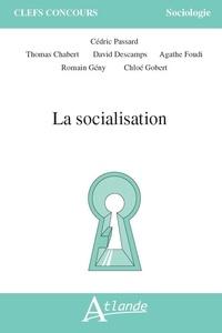 Cédric Passard - La socialisation.