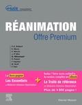 CEMIR et Georges Offenstadt - Réanimation.