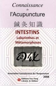 Jean-Claude Dubois et Anita Bui - Connaissance de l'Acupuncture  : Intestins - Labyrinthe et Métamorphoses.