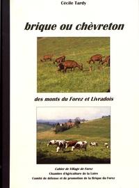 Cécile Tardy - Les cahiers de Village de Forez N° 33, mai 2007 : Brique ou chèvreton des monts du Forez et Livradois.