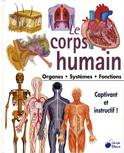 Le Corps Humain Les Organes