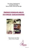 César Kapseu et Noël Djongyang - Energies renouvelables en Afrique subsaharienne.