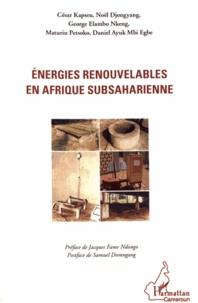 Energies renouvelables en Afrique subsaharienne.pdf