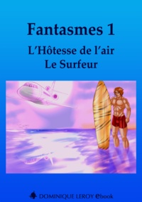 Chairminator Chairminator et Chocolatcannelle Chocolatcannelle - Fantasmes 1, L'Hôtesse de l'air, Le Surfeur.