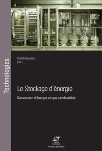 Deedr.fr Le stockage d'énergie - Conversion d'énergie en gaz combustible Image