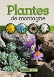 Chamina - Plantes de montagne.