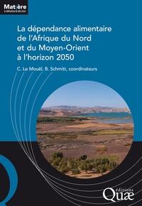 Chantal Le Mouël et Bertrand Schmitt - La dépendance alimentaire de l'Afrique du nord et du Moyen-Orient à l'horizon 2050.