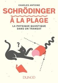 Téléchargez des livres epub gratuitement en ligne Schrödinger à la plage  - La physique quantique dans un transat (French Edition) MOBI DJVU 9782100772896