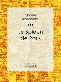 Ebooks avec téléchargement gratuit audio Le Spleen de Paris 9782335005387