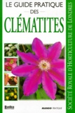 Charles Chesshire - Clématites.