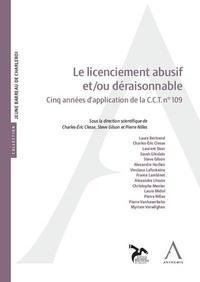 Charles-Eric Clesse et Steve Gilson - Le licenciement abusif et/ou déraisonnable - Cinq années d'application de la C.C.T.n° 109.