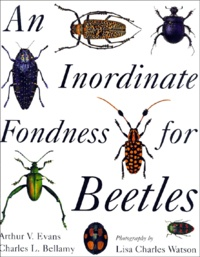 Histoiresdenlire.be An Inordinate Fondness for Beetles Image