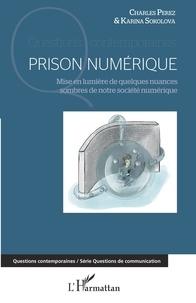 Charles Perez et Karina Sokolova - Prison numérique - Mise en lumière de quelques nuances sombres de notre société numérique.
