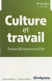 Charles Tafanelli et Guillaume Vannier - Culture et travail - Thèmes IEP de province 2014.