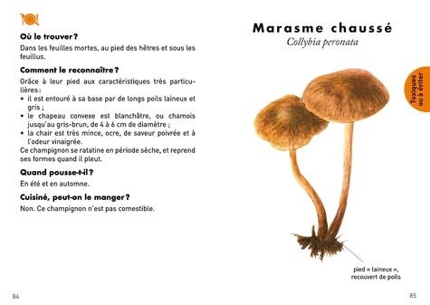 Le petit guide des champignons. 60 espèces à découvrir