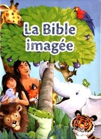 Openwetlab.it La Bible imagée - Les histoires bibliques préférées des tout jeunes lecteurs Image