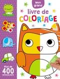 Charly Lane - Mon grand livre de coloriage - Plus de 400 autocollants.