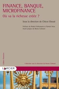 Chicot Eboué - Finance, banque, microfinance - Où va la richesse créée ?.