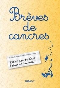 Chiflet & Cie - Brèves de cancre.