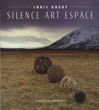 Chris Drury - Silence art espace.