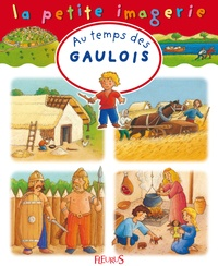 Christel Desmoinaux et Hélène Grimault - Au temps des Gaulois.