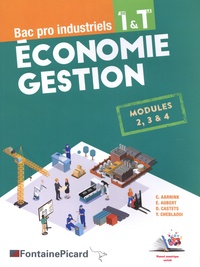 Christelle Aarnink et Emmanuelle Aubert - Economie Gestion 1re & Tle Bac pro industriels - Modules 2, 3 & 4.