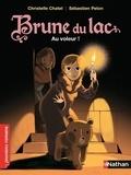 Christelle Chatel et Sébastien Pelon - Brune du Lac Tome 4 : Au voleur !.