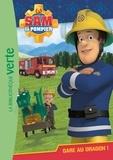 Christelle Chatel - Sam le pompier Tome 3 : Gare au dragon !.