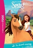 Christelle Chatel - Spirit Tome 1 : Le cheval sauvage.