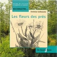 Christian Guilleaume - Les fleurs des prés.