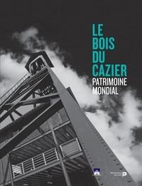 Christian Joosten - La catastrophe du Bois du Cazier.