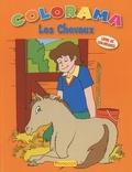 Christian Ortega - Livre de coloriages : Les Chevaux.