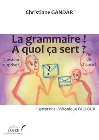 La grammaire! A quoi ça sert ?.pdf