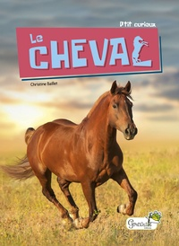 Christine Baillet - Le cheval.