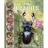 Christine Baillet - Les insectes.