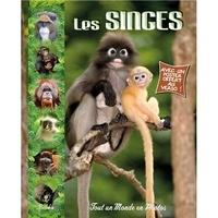 Christine Baillet - Les singes.