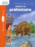 Christine Palluy - La pierre du temps - Visite à la préhistoire.
