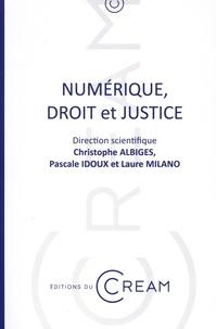 Christophe Albiges et Pascale Idoux - Numérique, droit et justice.