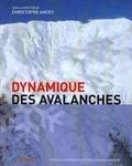 Christophe Ancey - Dynamique des avalanches.