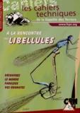 Christophe Bernier - A la rencontre des libellules.